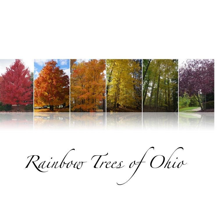 Rainbow Trees_print